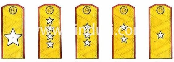 二战时期的苏军军衔,是有大将有大尉,而没有大校的。