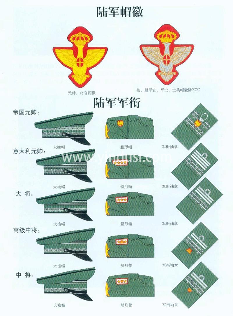 二战时期意大利陆军元帅,将官帽徽及军衔,大檐帽,船形帽,军衔肩章,军衔袖章。
